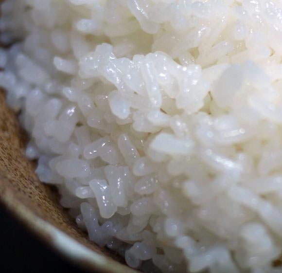 茶碗のお米のアップ