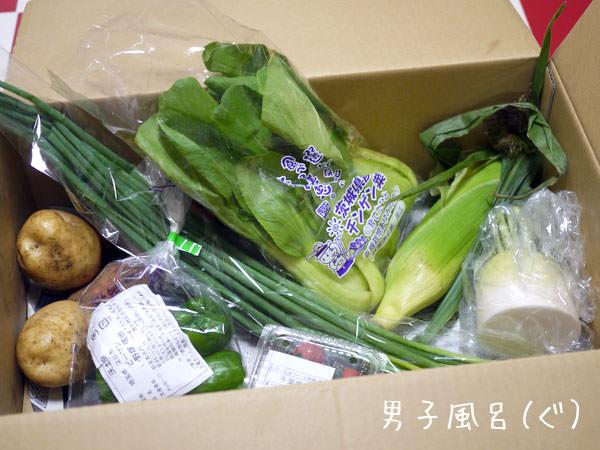 らでぃっしゅぼーや 野菜全体図
