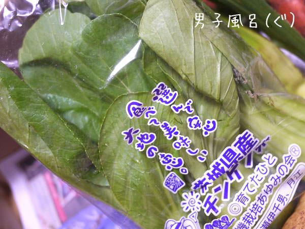 らでぃっしゅぼーや チンゲン菜