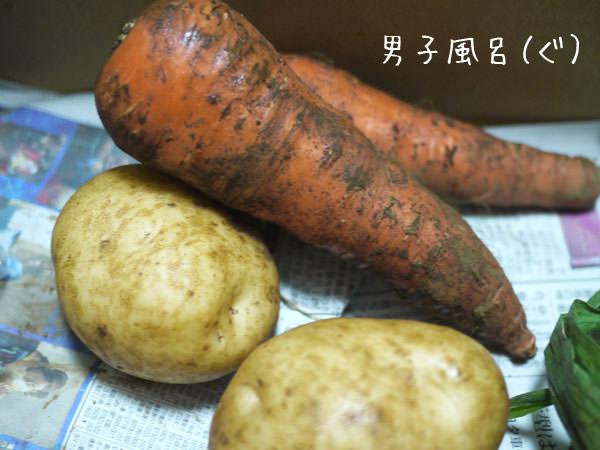らでぃっしゅぼーや 人参とジャガイモ