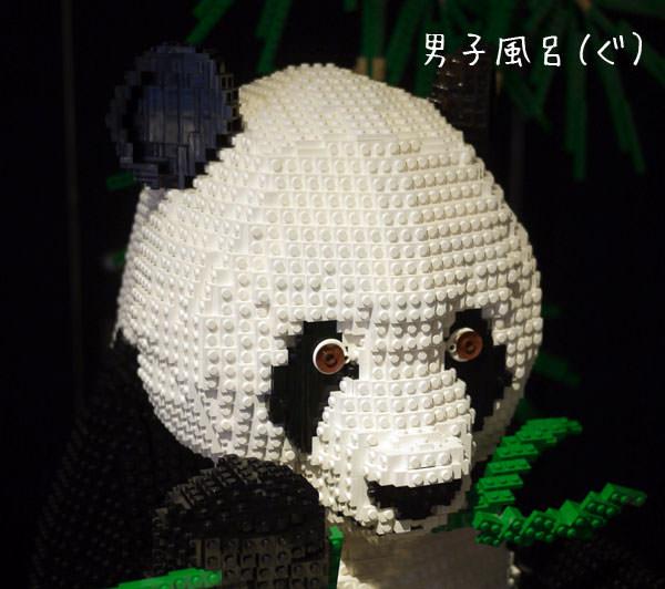 レゴ世界遺産 ジャイアントパンダ 顔アップ