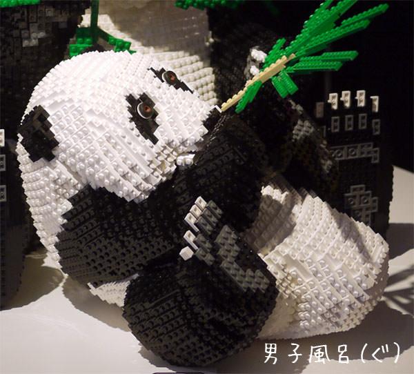 レゴ世界遺産 ジャイアントパンダ 子供アップ